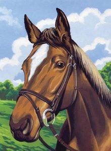 Schilderen op nummer Paardenhoofd