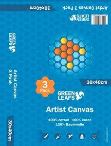 Schildersdoek Artist Canvas Greenleafs 30x40 Per 3 Pack