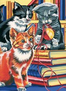 Schilderen op nummer Kitten op Boeken