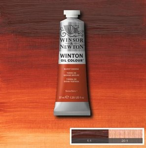 Winton 200ML 074 Burnt Sienna 2